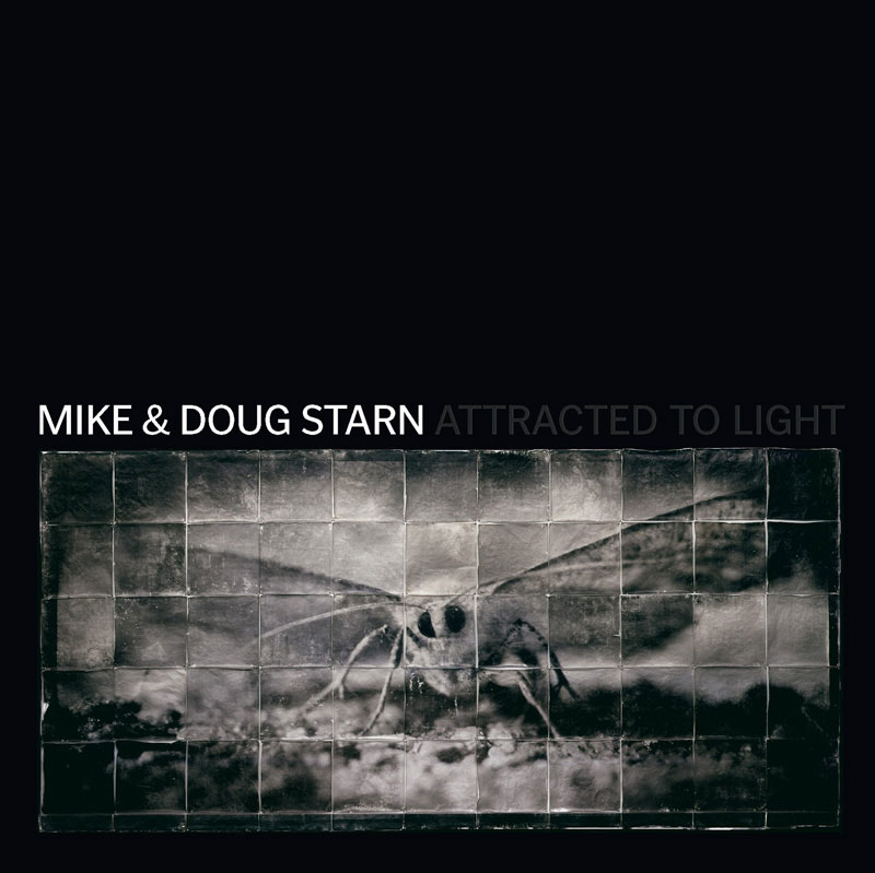MIKE & DOUG STARN. ATTRACTED TO LIGHT / 2003
